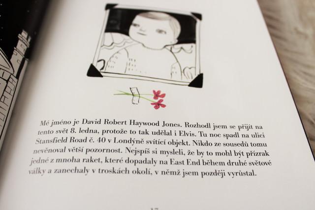 Fran Ruiz Maria Hesse Bowie Ilustrovany Zivotopis Zivot Mezi Radky